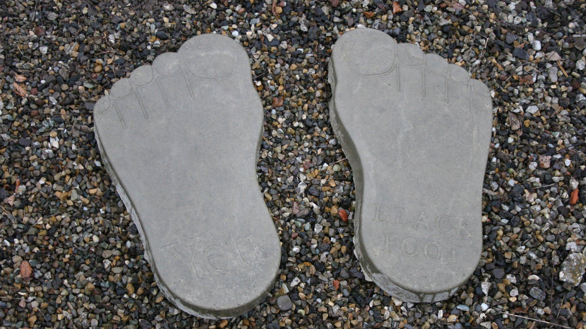 bigfoot-trittstein_f